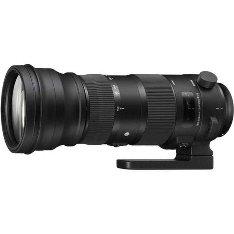 Sigma 150-600mm for Nikon F
