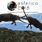 Nature Photo Competition Asferico 2018 مجله عکس نوریاتو