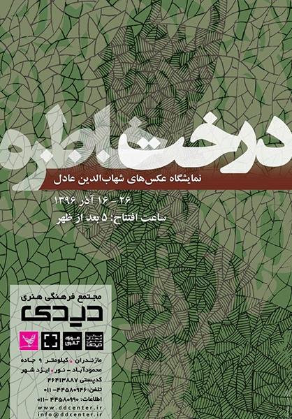 شهاب الدین عادل مجله عکس نوریاتو