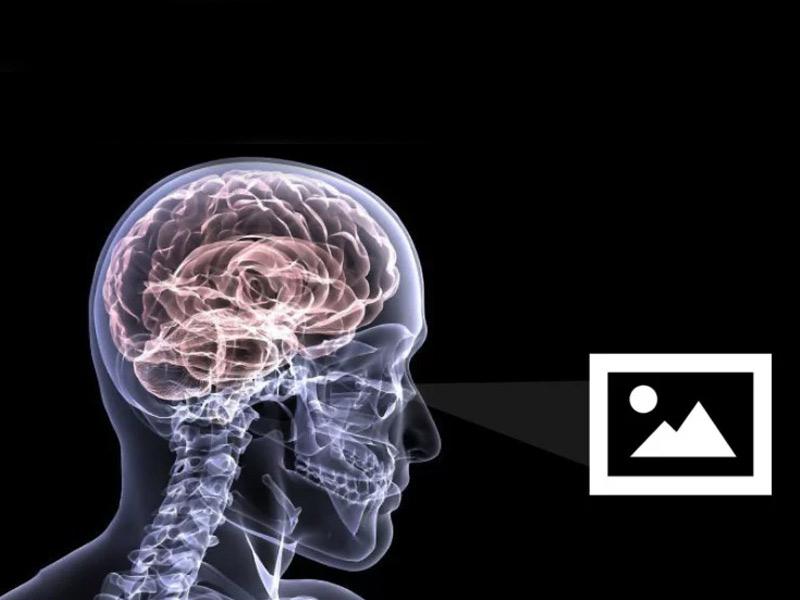 زیباییشناسی عصبی؛جایی که علم با هنر عکاسی تلاقی میکند