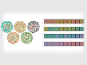 رنگها چقدر در عکاسی اهمیت دارند؟