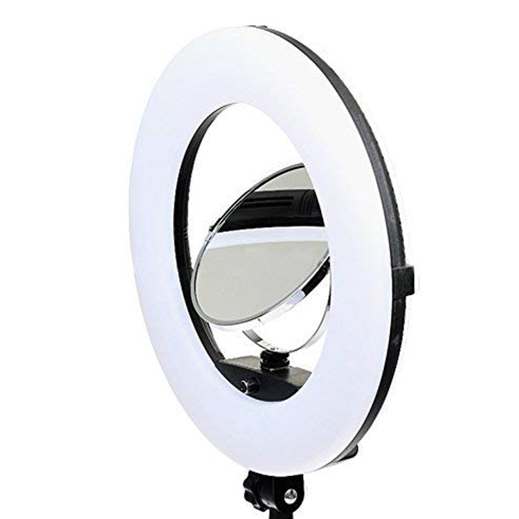 رینگ لایت Ring light FD 480II