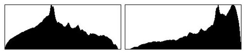 نحوه کار با هیستوگرام عکس