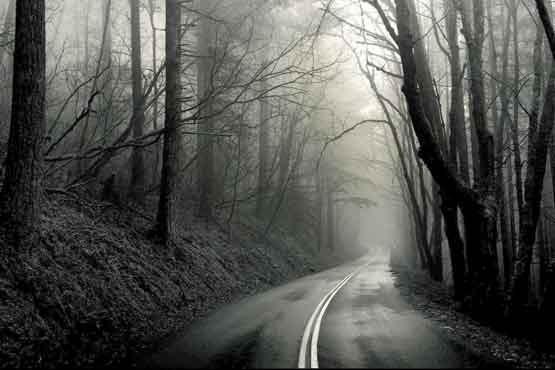 عکس سیاه و سفید از منظره