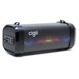 Cigii speaker F41