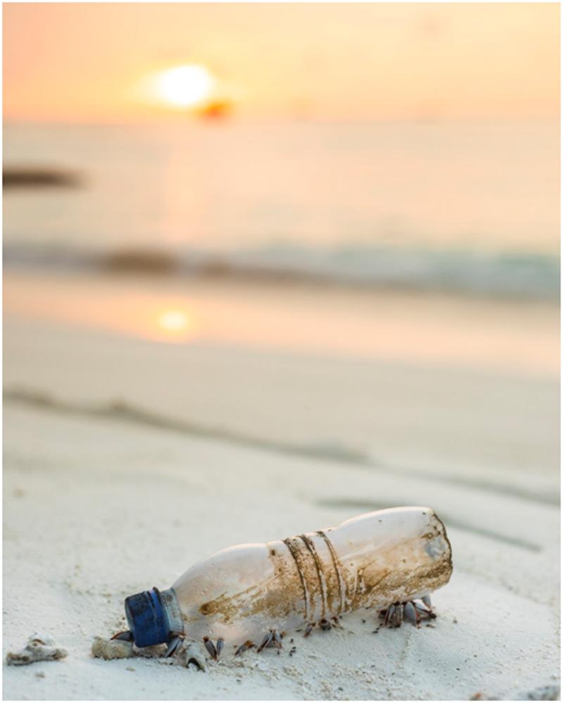 عکس هایی از آلودگی محیط زیست