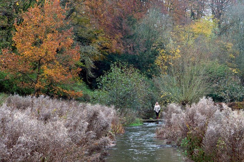 عکاسی از رنگ های پاییز