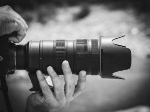 بهترین لنز ها برای عکاسی حیات وحش